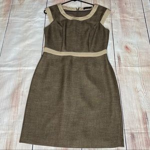 The Limited Capped Sleeve Brown Career Dress